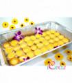 Mini Egg Tarts (Hi-Tea Set)