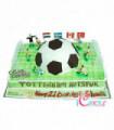 Sports Cake Design